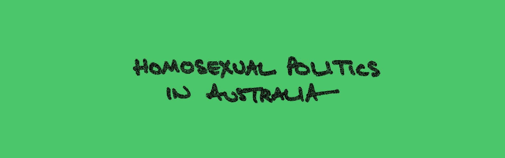 Homosexual Politics In Australia – Di Minnis, Craig Johnstone, 1978 – Banner Web